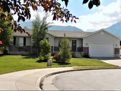 Providence Single Family Home For Sale: 370 Meadow Ln