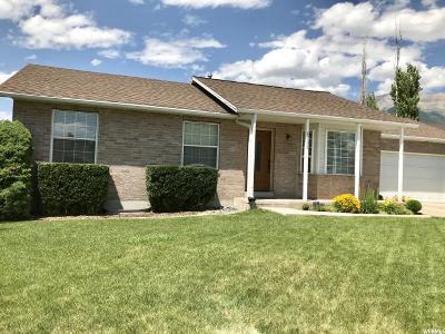 Utah County Single Family Home For Sale: 1008 W 1340 N