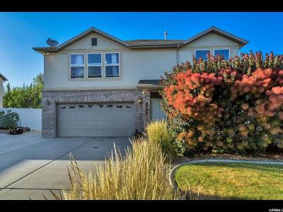 Salt Lake County Single Family Home For Sale: 6732 W Malissa Ann Dr