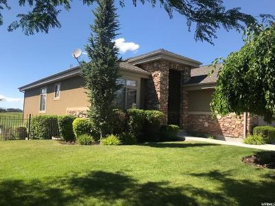 Utah County Single Family Home For Sale: 790 S Fairway Ln W