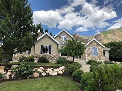 Alpine Single Family Home For Sale: 355 Ridge Ln