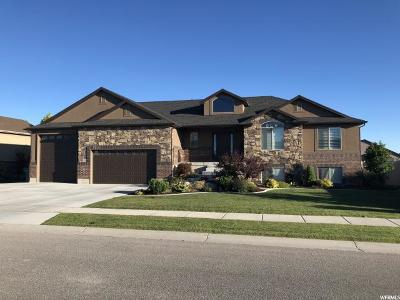 Weber County Single Family Home For Sale: 4811 W 4100 S