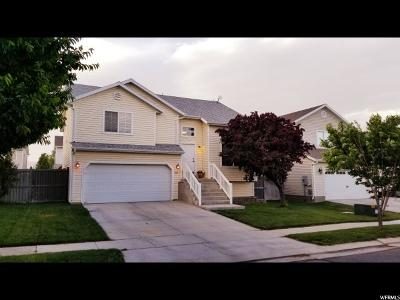 Eagle Mountain Single Family Home For Sale: 4091 E Dillions Dr N