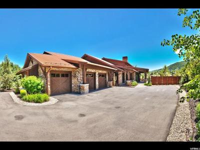 Park City Single Family Home For Sale: 1587 W Shadow Mountain Ln