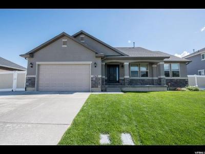 Lehi Single Family Home For Sale: 1563 W Brooke St