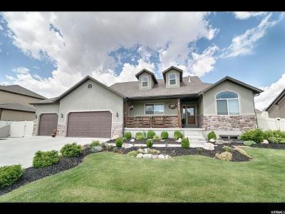 West Jordan Single Family Home For Sale: 8456 S Rundlestone Dr