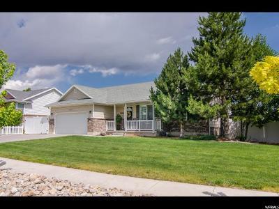West Jordan Single Family Home For Sale: 5082 Pebblestone Cir