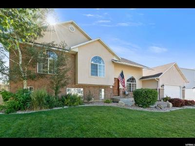Spanish Fork Single Family Home For Sale: 758 S 690 St E