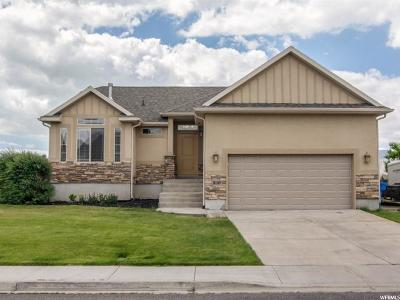 Lehi Single Family Home For Sale: 3107 W Willow Reed Dr