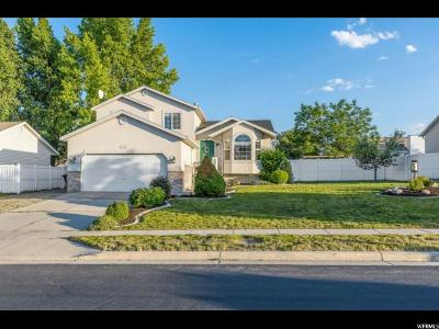 West Jordan Single Family Home For Sale: 6173 W Miners Mesa S