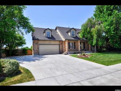 South Jordan Single Family Home For Sale: 1167 Chavez Dr
