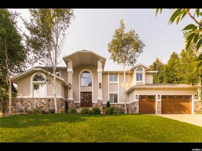 Salt Lake City Single Family Home For Sale: 1459 E Kristianna Cir N