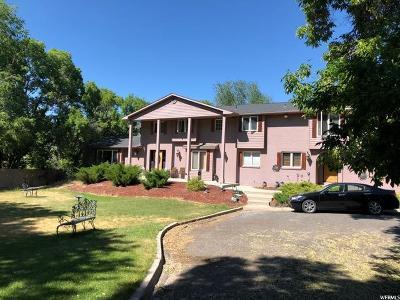 Sandy Single Family Home For Sale: 1535 E River Oaks Dr