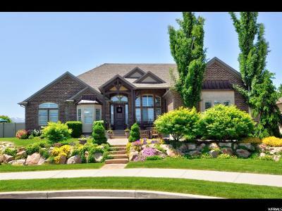 South Jordan Single Family Home For Sale: 10722 S Farmview Ln
