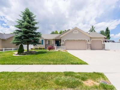 South Jordan Single Family Home For Sale: 11728 S Amber Stone Dr W
