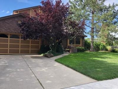 Sandy Single Family Home For Sale: 898 La Casa Cir