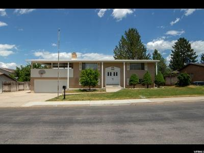 Spanish Fork Single Family Home For Sale: 995 E 120 S