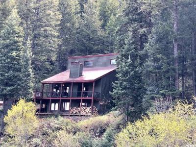 Park City Single Family Home For Sale: 595 Matterhorn Dr