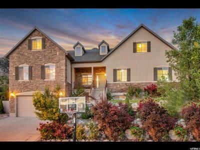 Single Family Home For Sale: 10244 Tamarack Way