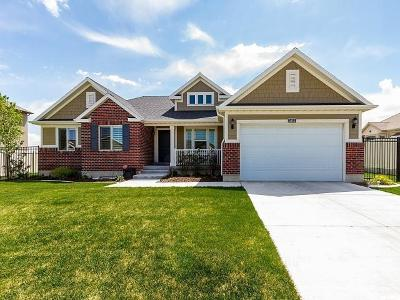 Riverton Single Family Home For Sale: 3853 W Red Sands