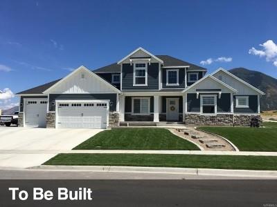 Salem Single Family Home For Sale: 1187 S 50 E #19