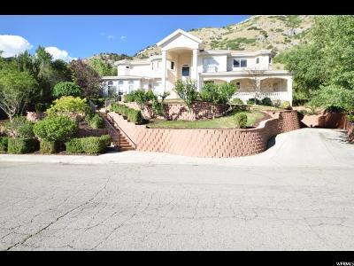 Provo UT Single Family Home For Sale: $950,000