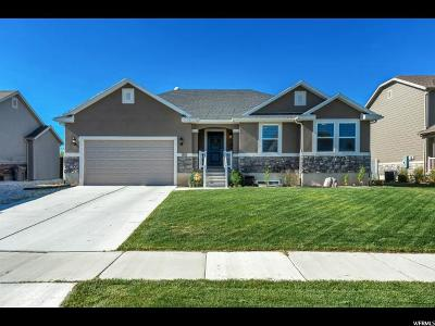 Springville Single Family Home For Sale: 1053 W 1550 S