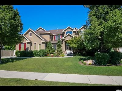 Sandy Single Family Home For Sale: 9565 S Carriage Chase Ln E