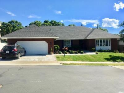 Sandy Single Family Home For Sale: 2244 E Oak Leaf Way