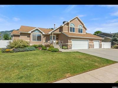 Sandy Single Family Home For Sale: 12143 Hidden Rd