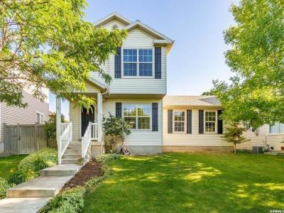 Eagle Mountain Single Family Home For Sale: 3858 E Chippewa Way