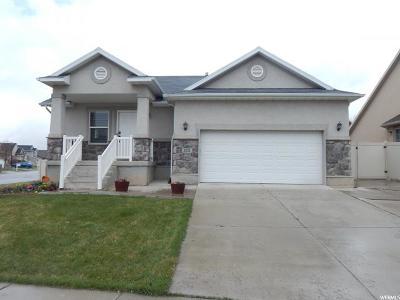 Lehi Single Family Home For Sale: 2432 2150