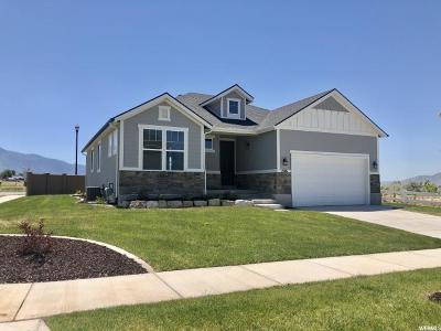 Spanish Fork Single Family Home For Sale: 1526 E Aspen Grove Dr