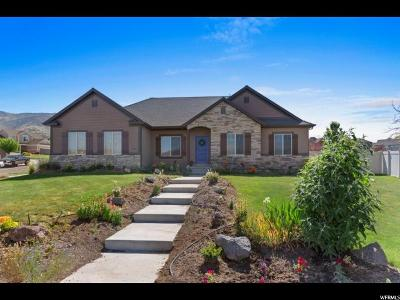 Saratoga Springs Single Family Home For Sale: 2757 S Day Lilly Dr