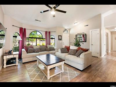 St. George Single Family Home For Sale: 2464 E 750 N