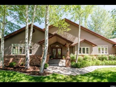 Park City Single Family Home For Sale: 3770 W Lariat Rd