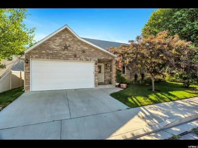 Payson Single Family Home For Sale: 231 E Jay Ln S