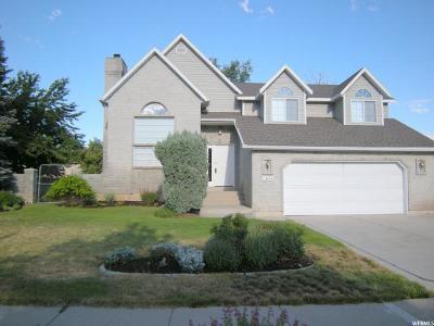 Sandy Single Family Home For Sale: 11834 S Casper Rd