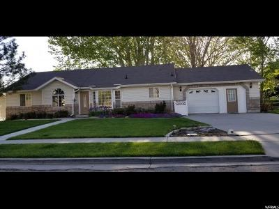 American Fork Single Family Home For Sale: 536 Storrs Ave