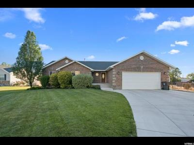 Mapleton Single Family Home For Sale: 1115 N 700 E