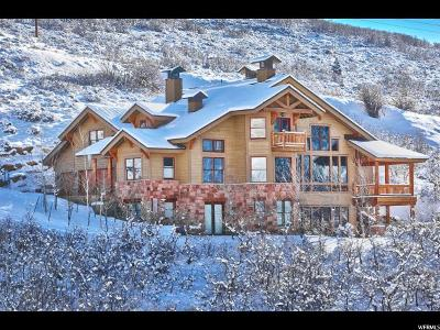 Park City Single Family Home For Sale: 1179 Aerie Dr