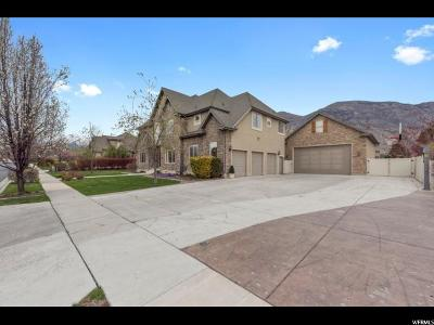 American Fork Single Family Home For Sale: 1264 N 1270 E
