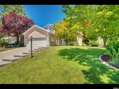 Orem Single Family Home For Sale: 1956 N 630 E