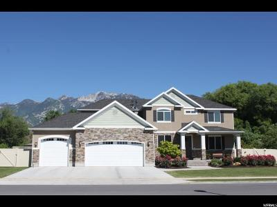 Sandy Single Family Home For Sale: 11219 S Farnsworth Ln E