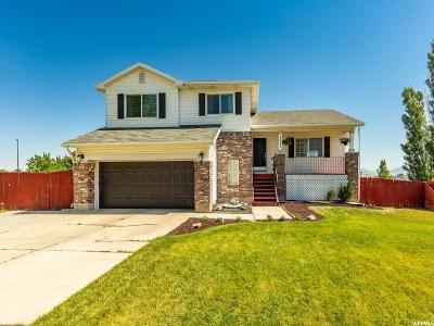 West Jordan Single Family Home For Sale: 4642 W Travis Ln
