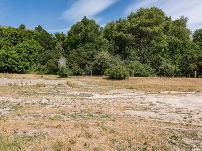 Provo Residential Lots & Land For Sale: 252 E 3550 N