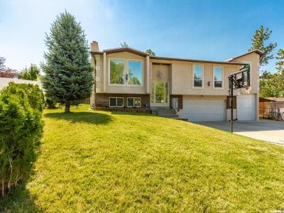 Midvale Single Family Home For Sale: 7755 S 1100 E