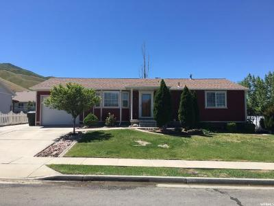 Tooele Single Family Home For Sale: 801 Timpie Rd W