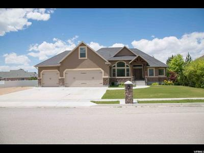 Tremonton Single Family Home For Sale: 141 N 570 E