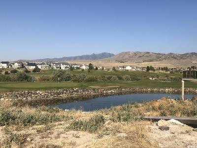 Lehi Residential Lots & Land For Sale: 2453 N Sunset Vw